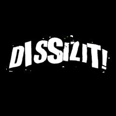 dissizit-logo